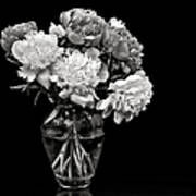 Vase Of Peonies In Black And White Poster