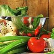 Veggies On The Counter Poster by Sandra Cunningham