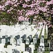 Veterans National Cemetery Poster