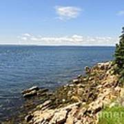 View From Bass Harbor Light Poster