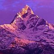 View Of Machhapuchhare At Sunrise From Poster