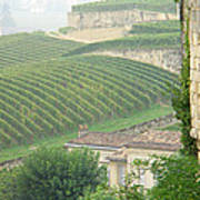 View Over The Vineyards From Saint Emilion France Poster