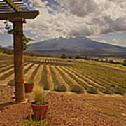 View Toward Mt Shasta Horizontal Poster