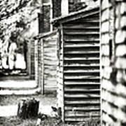 Vintage Cabins Poster