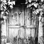 Vintage Door Poster