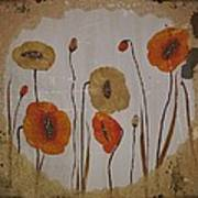 Vintage Red Poppies Painting Poster