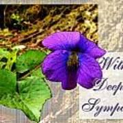 Violet Greeting Card  Sympathy Poster