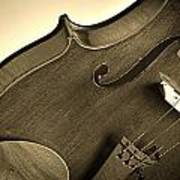 Violin Isolated Poster