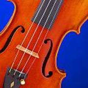 Violin Isolated On Blue Poster