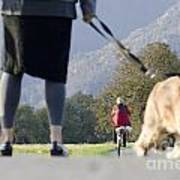 Walking With Her Dogs Poster