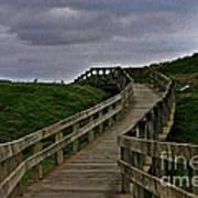 Walkway On Phillip Island Poster
