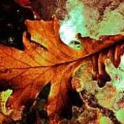Warm Oak Poster