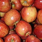 Washington Apples Poster