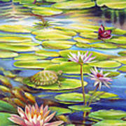 Water Lilies At Mckee Gardens I - Turtle Butterfly And Koi Fish Poster