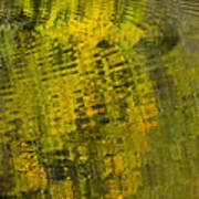 Water Reflection Abstract Autumn 1 D Poster