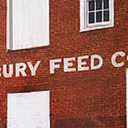 Waterbury Feed Poster