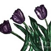 Watercolor Purple Tulips Poster