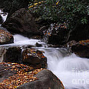 Waterfall In Fall Poster