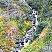 Waterfall In Skagway Poster