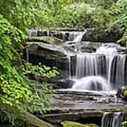 Waterfall Near Mabbitt Spring Poster