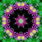 Waterlily Kaleidoscope Poster