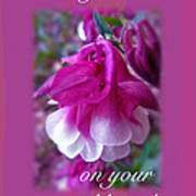 Wedding Blessings Greeting Card - Columbine Blossom Poster