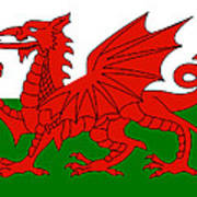 Welsh National Flag Poster