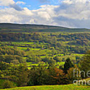 Wensleydale Near Westholme Bank In The Yorkshire Dales Poster