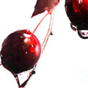 Wet And Wild Plum Poster