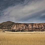 Wheatfield Zion National Park Poster