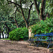 White Point Gardens Bench Poster by Jenny Ellen Photography