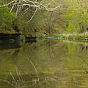 Whitewater River Spring 13 Poster