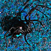 Wicked Widow - Blue Poster