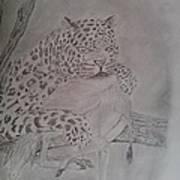 Wild Predator Poster
