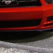 Wild Red Mustang Poster