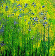 Wildflower Impression By Jrr Poster by First Star Art