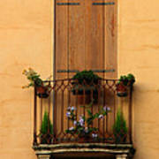 Window And Balcony In Vicenza Poster