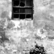 Window And Sidewalk Bw Poster