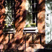 Window Boxes Greenwich Village Poster
