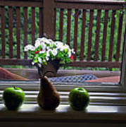 Window Sill 4 Poster
