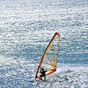 Windsurfer, Baja, Mexico Poster