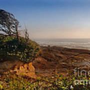 Windswept Coast Poster
