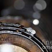 Wine Barrels In Oak Poster