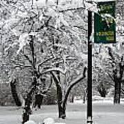 Winter 0003 Poster