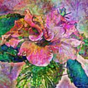 Winter Bloom Poster