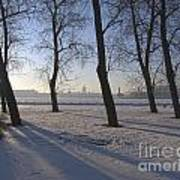 winter forest Peterburg Poster