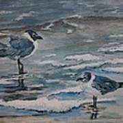 Winter Gulls Poster