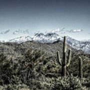 Winter In The Desert Poster