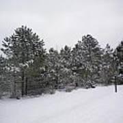 Winter Slope Poster