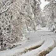 Winter Tracks Poster